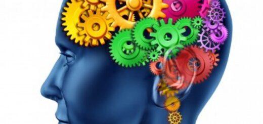 developing brain skills