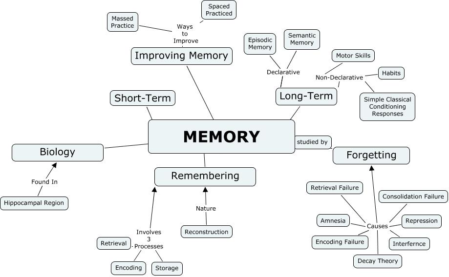Adam Prudhomme memory.cmap