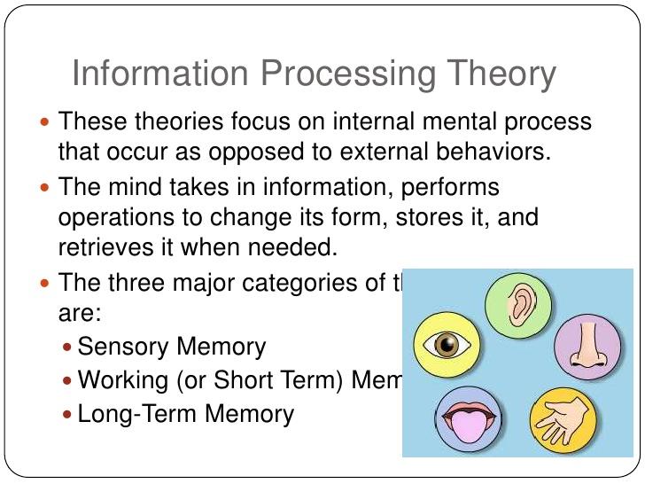 information-processing-Information Processing Approach of Memory
