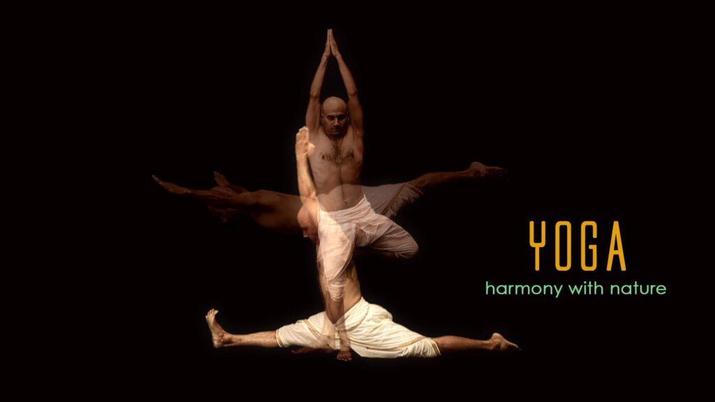 yoga: harmony with nature
