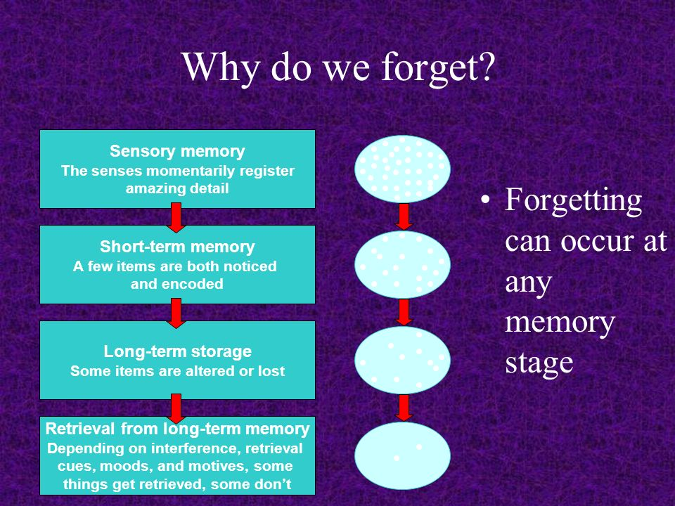 Why do we Forget Something?: slide_2